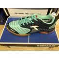 TIBHAR BLIZZARD SPEED 綠色 乒乓球鞋