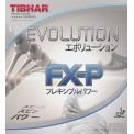 TIBHAR Evolution FX-P 乒乓球 套膠