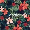 Andro 142036 乒乓球 專用 膠皮 保護貼